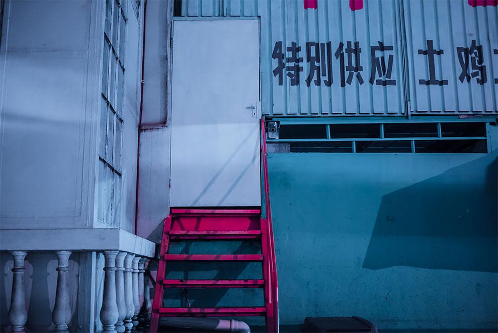 Elsa Bleda fotografía neon sudafrica como Hong Kong