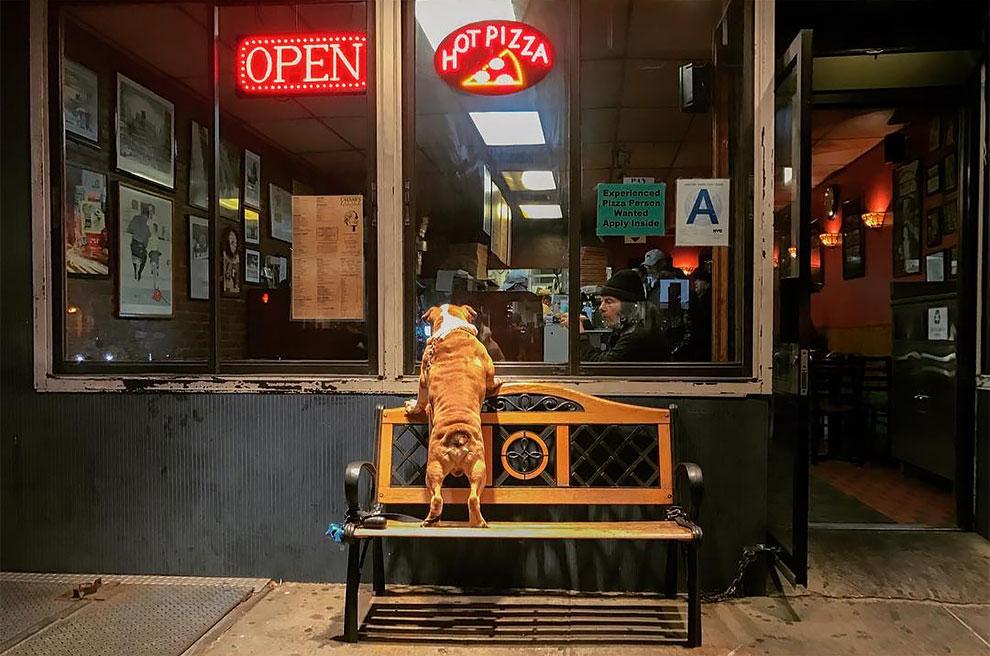 Jonathan Higbee Un mundo de coincidencia en las calles de Nueva York