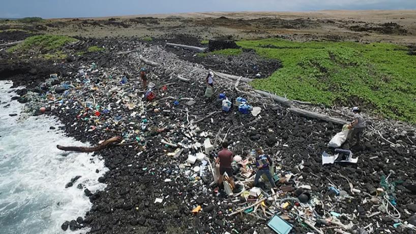 Ballena fabricada con 5 toneladas de plásticos del océano