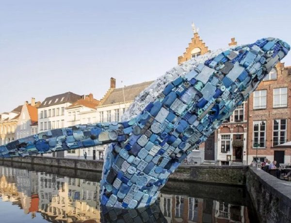 Ballena fabricada con 5 toneladas de plásticos del océano home