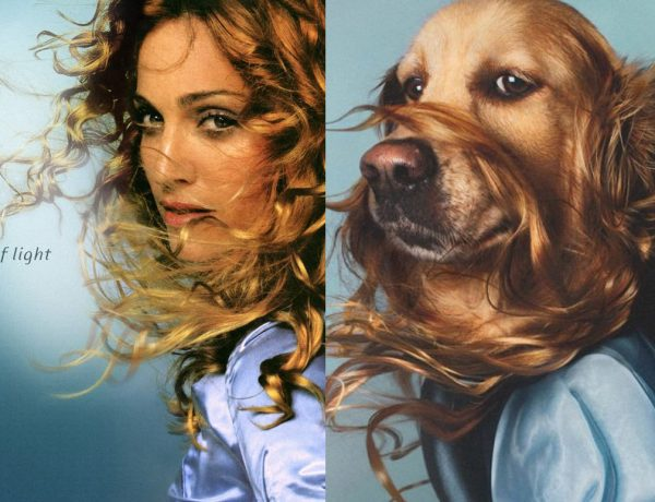 Madonna-Ray-Of-Light-Dog