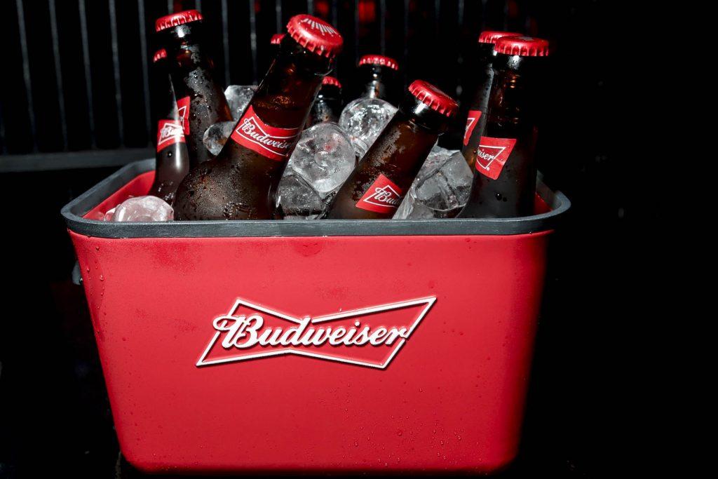 Alucination XX Crobar Budweiser (65)