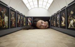 Meté tu cabeza en la galería (7)