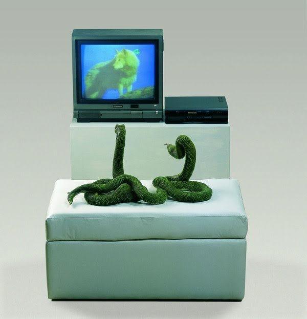 Pablo Suarez, Cazadores Mediaticos, 2003