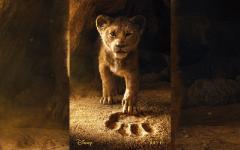 rey leon live action
