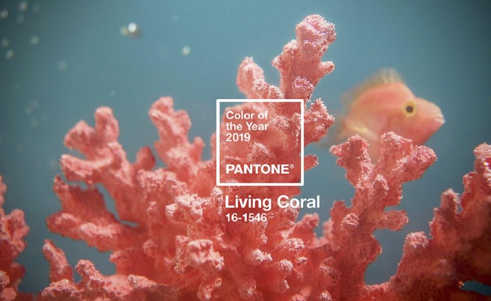 'Living Coral' es el color de 2019, según Pantone