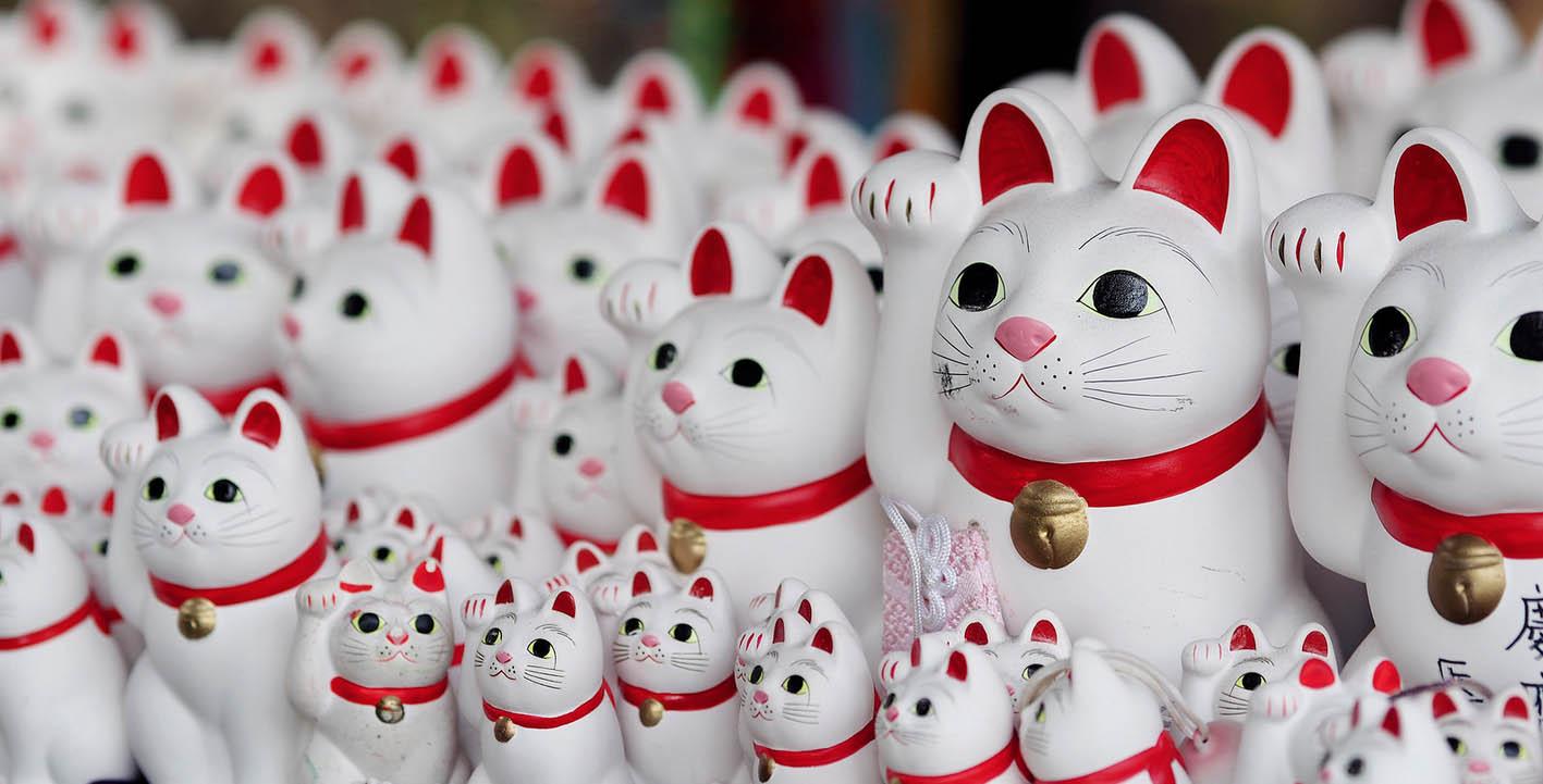 """Gotokuji, el templo de """"gatos de la suerte"""" que atrae a instagramers de todo el mundo"""