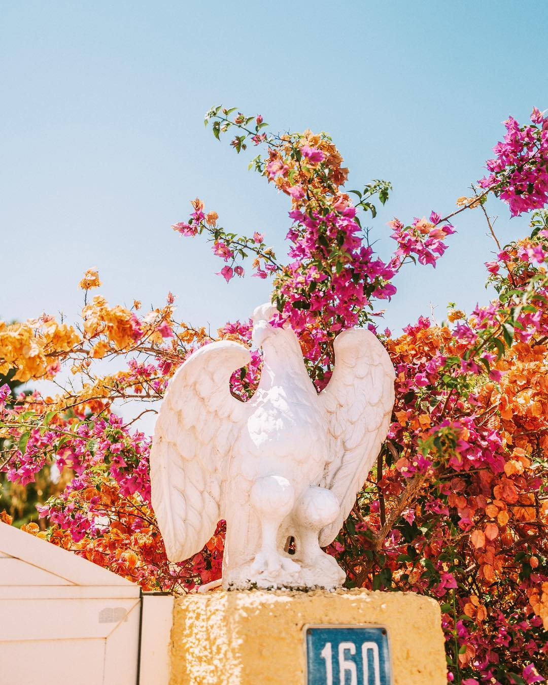 fotografo Joaquin Lucas paleta de colores de Wes Anderson  (71)