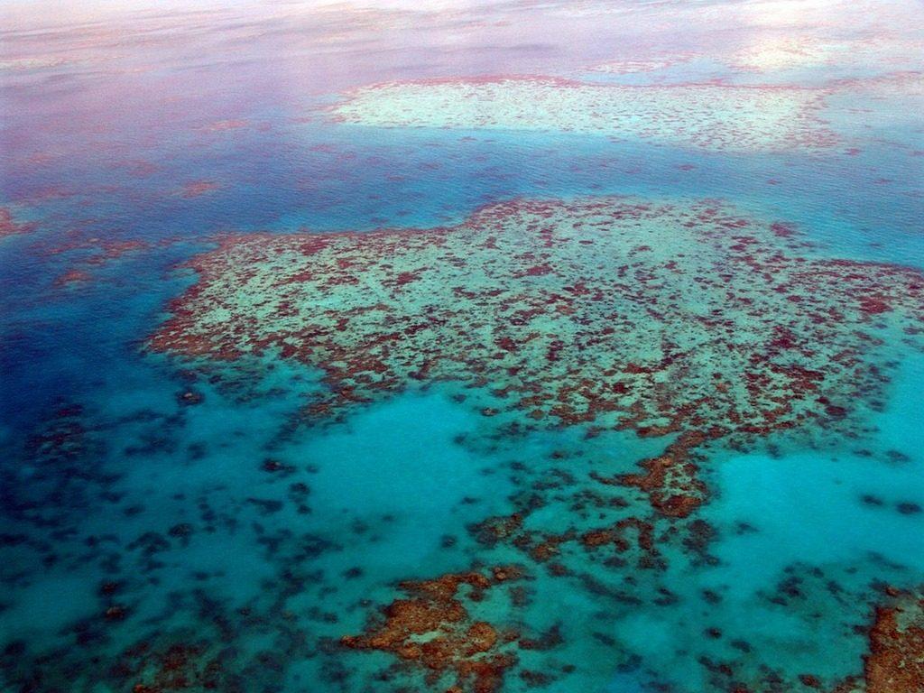 Gran Barrera de Coral Foto Pixabay Dominio Público