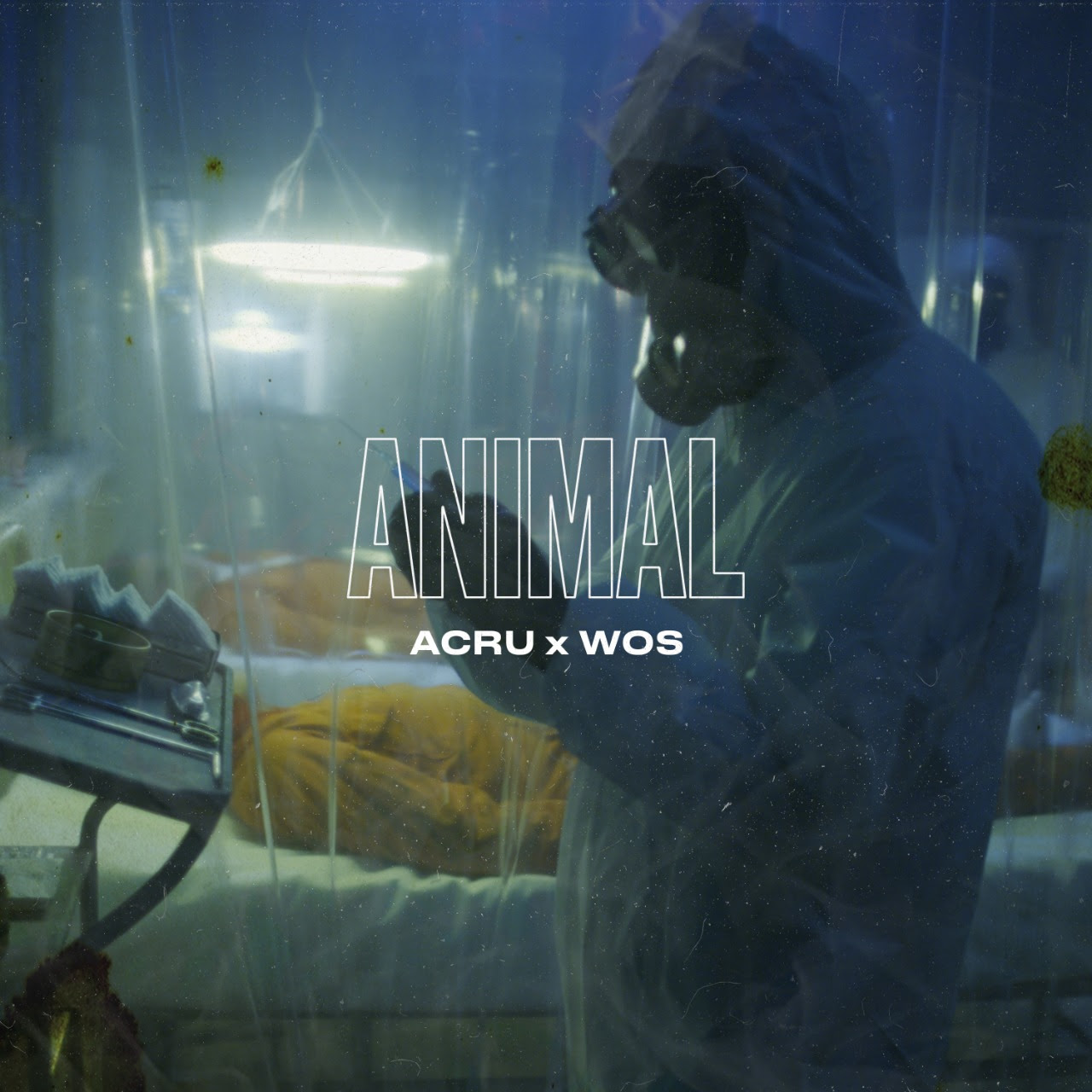 ACRU X WOS ANIMAL LOQUEVA