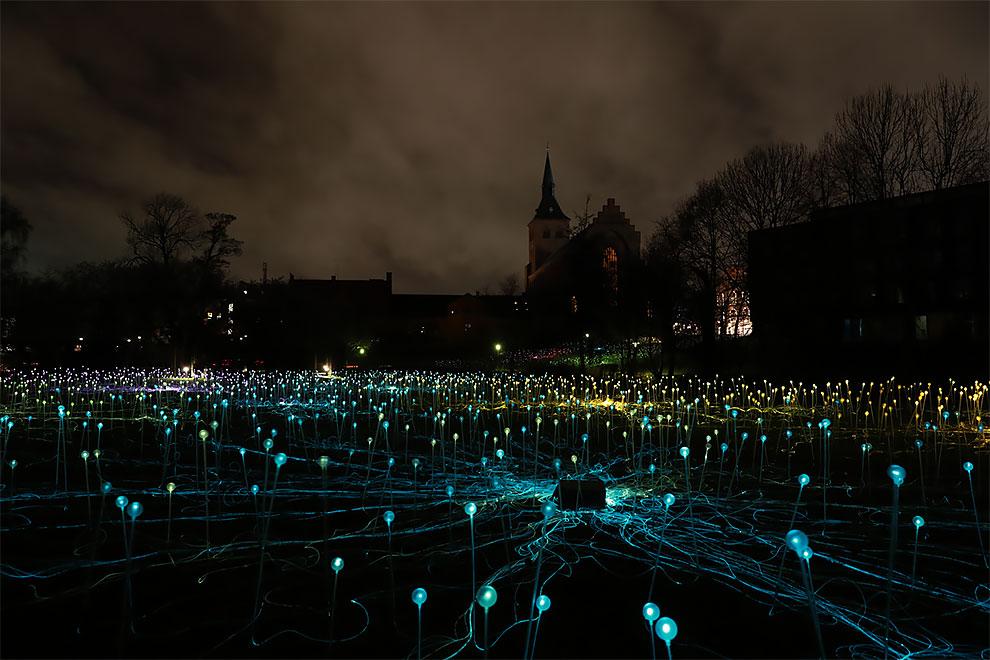 Campo de luz Bruce Munro crea instalaciones de luz en todo el mundo (3)
