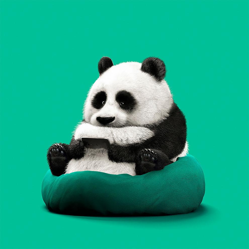 Guodong Zhao animales tecnología (3)