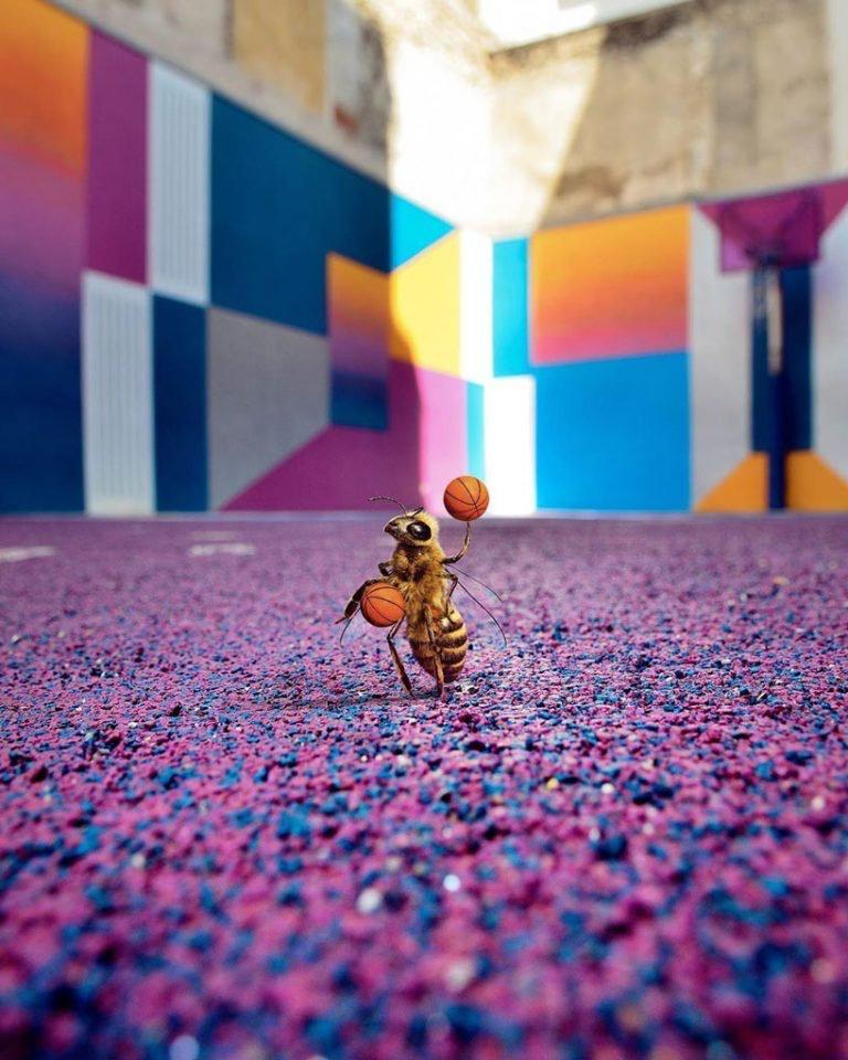 """La primera """"abeja influencer"""" que concientiza sobre el peligro de su especie (1)"""