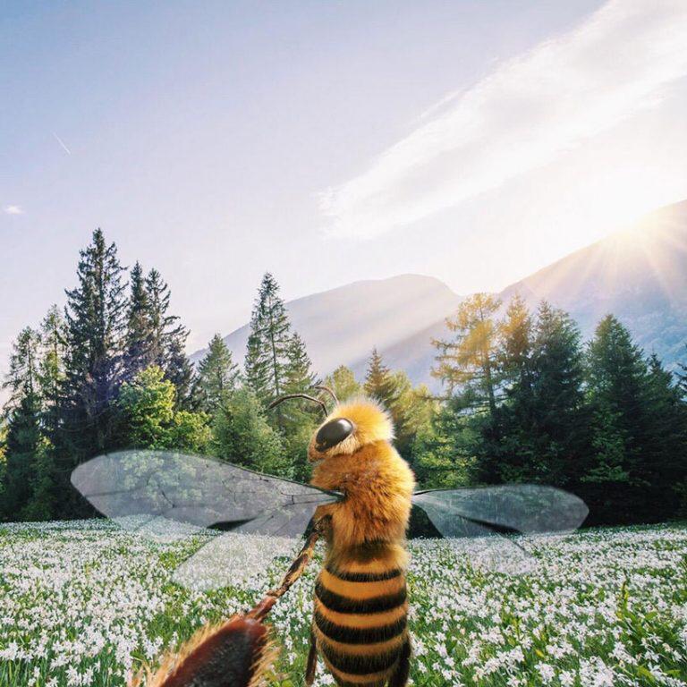 """La primera """"abeja influencer"""" que concientiza sobre el peligro de su especie (7)"""