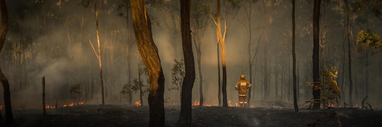 Australia-incendios-WeWork_loqueva (1)
