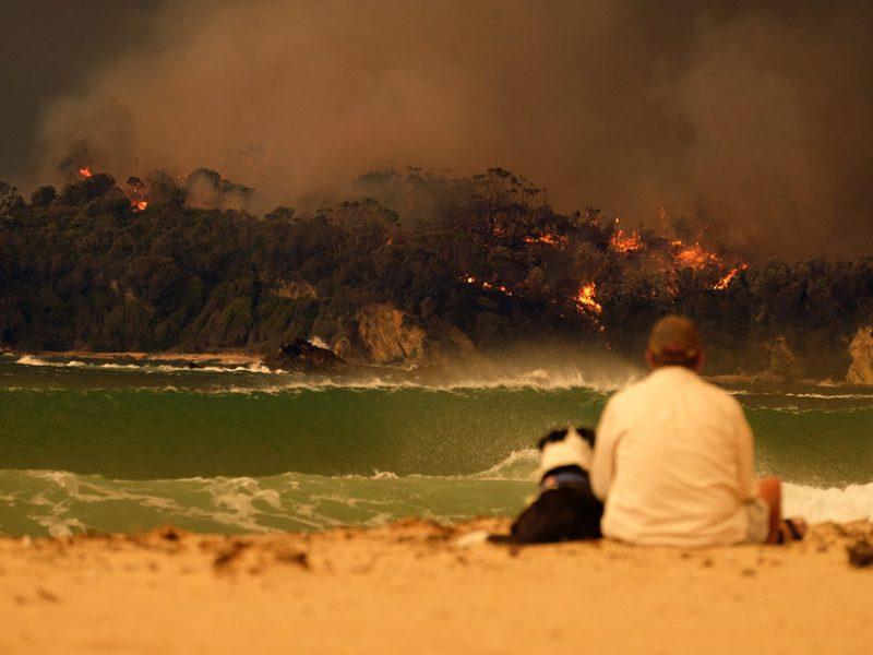 Australia-incendios-WeWork_loqueva (2)