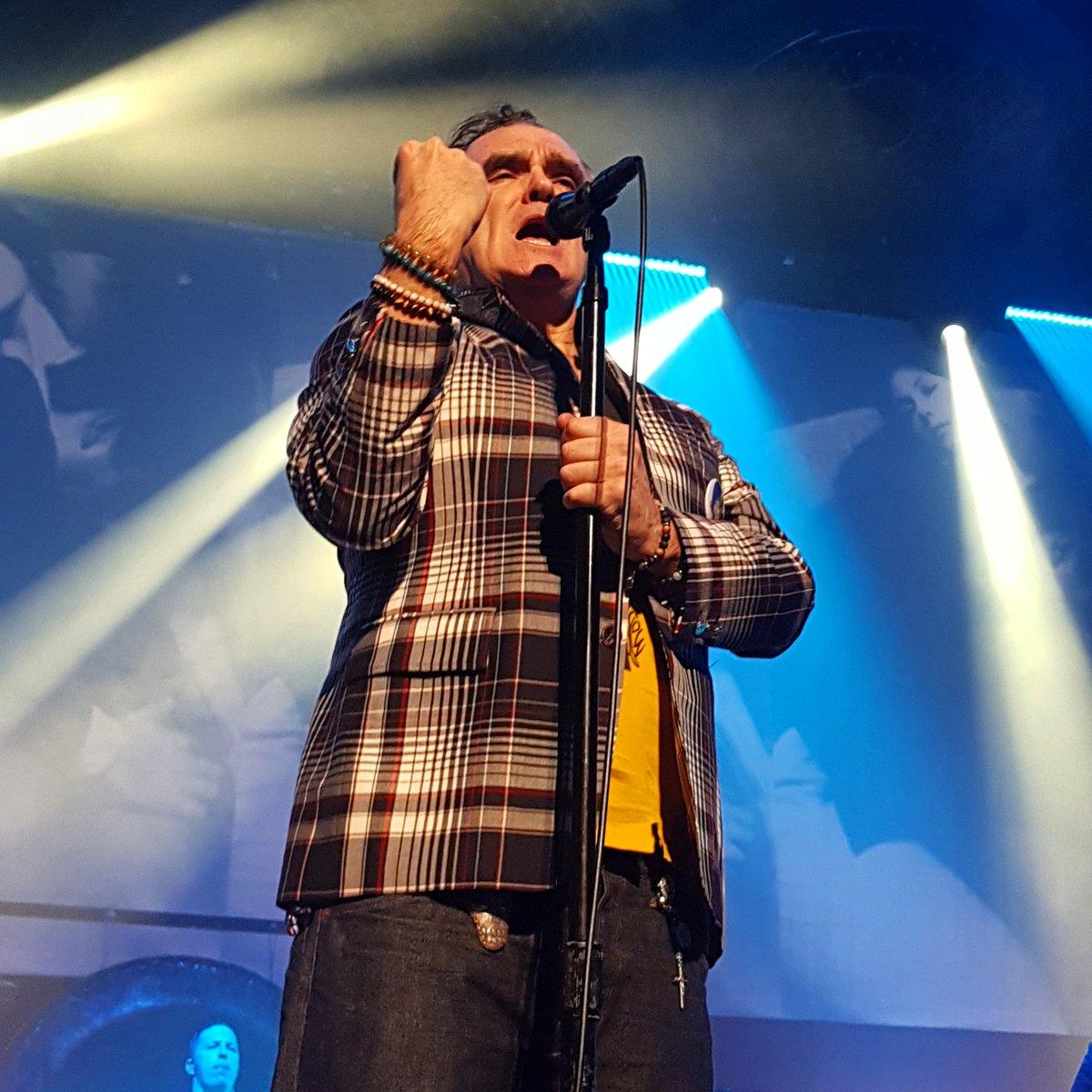 Morrissey lanzó su nuevo álbum I am not a dog on a chain (1)