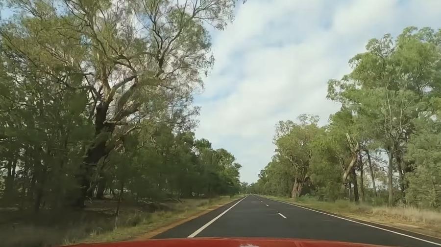 Audi te lleva a viajar 4 horas en auto (sin salir de tu casa) (1)