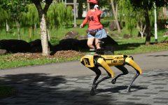 perro robot evita propagacion coronavirus (1)