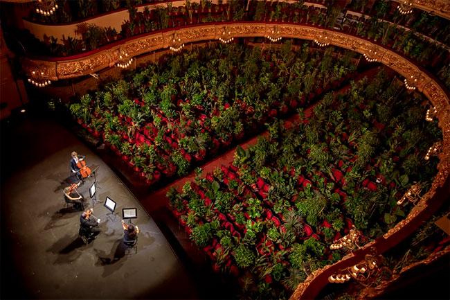 el Liceu de Barcelona reabre con un concierto para 2.292 plantas covid 19 (1)