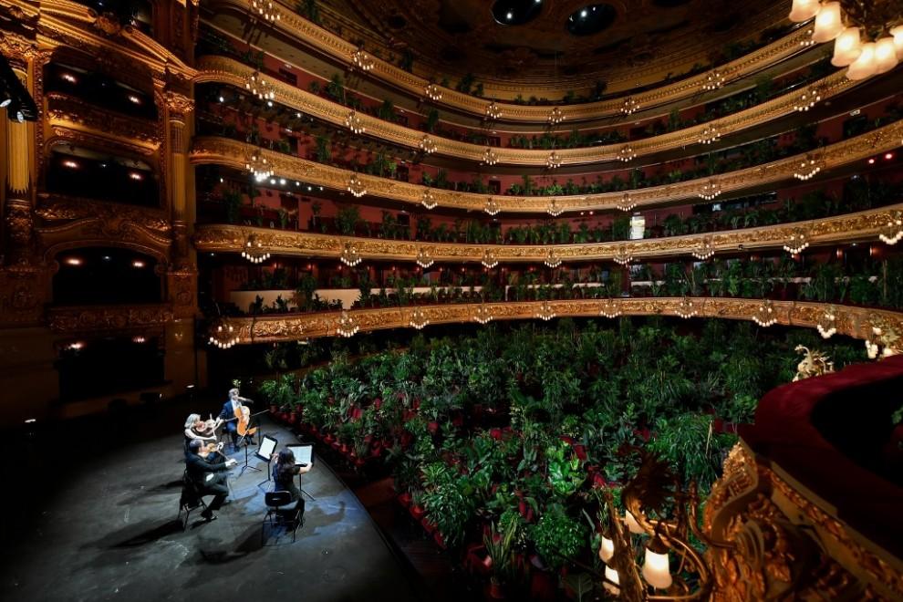 el Liceu de Barcelona reabre con un concierto para 2.292 plantas covid 19 (3)
