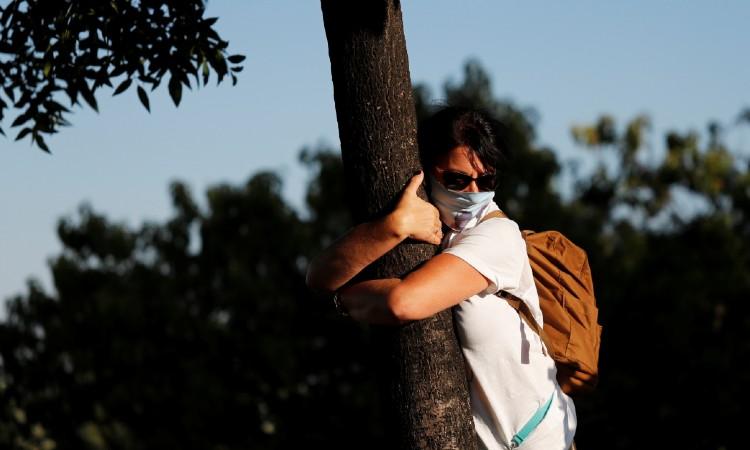 Abrazar árboles como terapia en tiempos de Covid-19 (4)