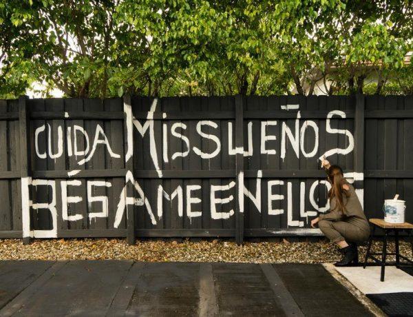 #NoEstasSola  acción digital liderada por la poeta peruano-estadounidense Danna Clark Literapy loqueva (3)