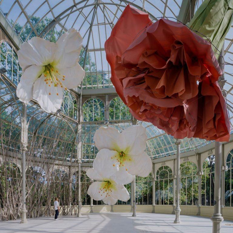 00008muestra flores Petrit Halilaj palacio de cristal