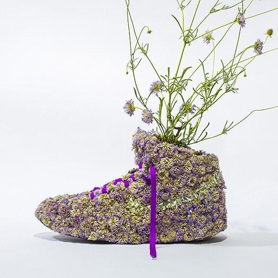 Monsieur Plant arte con plantas (10)