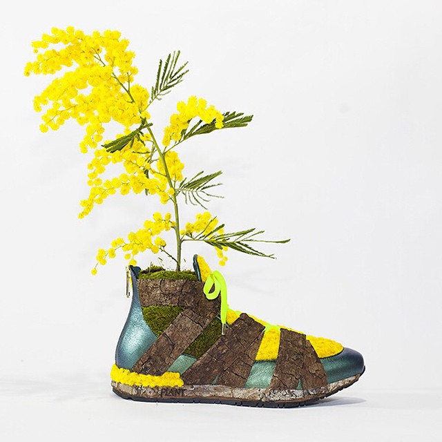 Monsieur Plant arte con plantas (11)