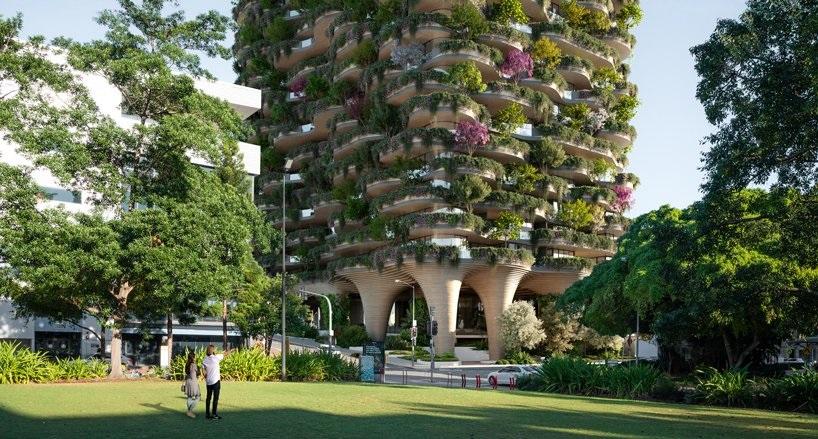 Koichi Takada y una torre en Australia que es un verdadero bosque urbano  (7)
