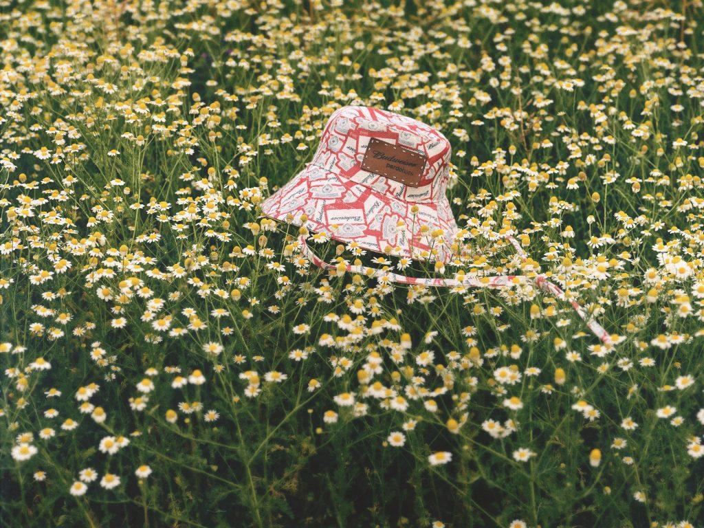 BudXPardo_sombrero sol pardo loqueva